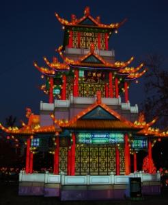 chinese lantern 015