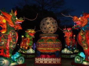 chinese lantern 017