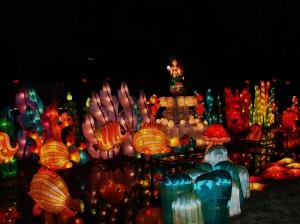 chinese lantern 022