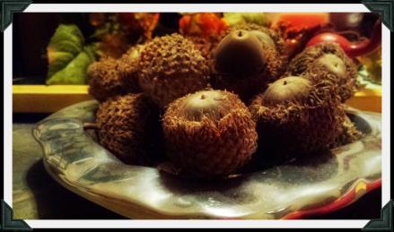 acorn1x