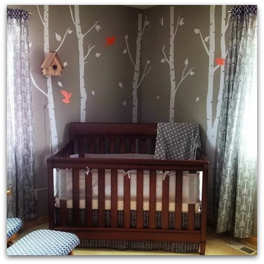 a special baby's nursery